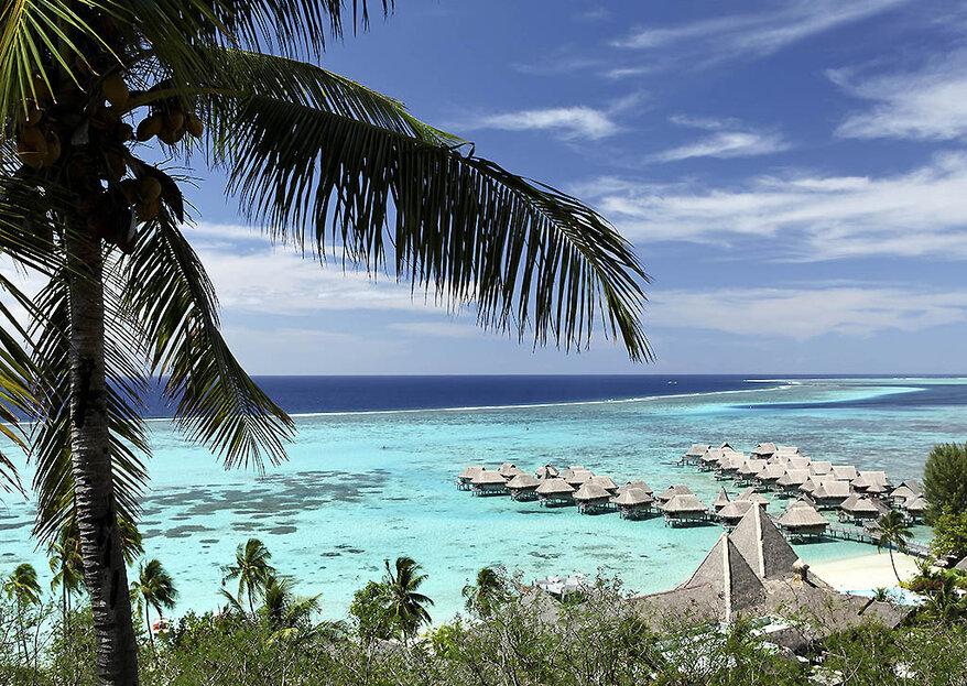 Miesiąc miodowy w Polinezji Francuskiej - wymarzona podróż do tropikalnego raju